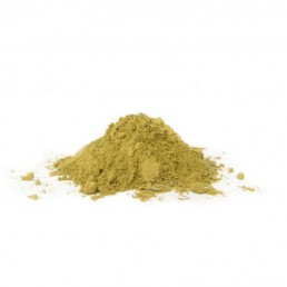 Post-Workout Protein Powder